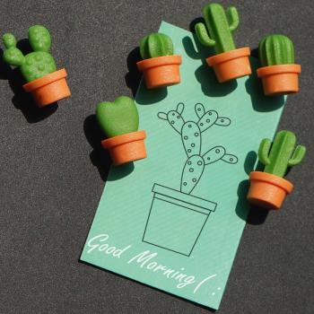Cacnet kaktus magneter fra Qualy